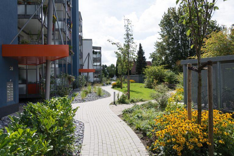 Tewes-Kampelmann Galabau Herne Neuanlage in Herne mit Bepflanzung Pflasterarbeiten Sichtschutz - WV Flottmannstraße (12)
