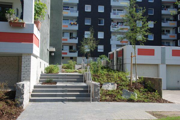 Tewes-Kampelmann Galabau Herne Neuanlage in Herne mit Bepflanzung Pflasterarbeiten Sichtschutz - Bochum Wohnstätten in Linden (34)
