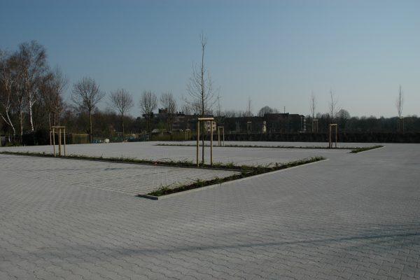 Tewes-Kampelmann Galabau Herne Neuanlage in Herne mit Bepflanzung Pflasterarbeiten Sichtschutz - Parkplatz EVK Eickel (3)