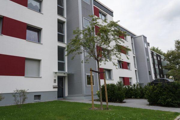 Tewes-Kampelmann Galabau Herne Neuanlage in Herne mit Bepflanzung Pflasterarbeiten Sichtschutz - WSW Am Rottfeld in Herne (2)