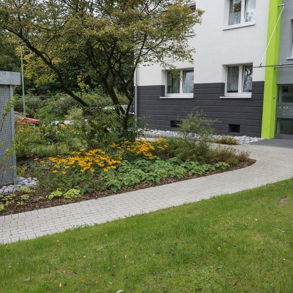 Tewes-Kampelmann Galabau Herne Neuanlage in Herne mit Bepflanzung Pflasterarbeiten Sichtschutz - WV Hölkeskamping (13)