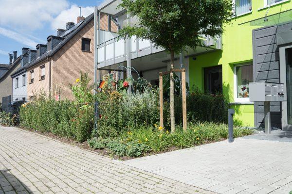 Tewes-Kampelmann Galabau Herne Neuanlage in Herne mit Bepflanzung Pflasterarbeiten Sichtschutz - WV Vödestraße (1)