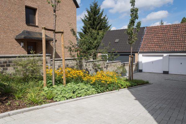 Tewes-Kampelmann Galabau Herne Neuanlage in Herne mit Bepflanzung Pflasterarbeiten Sichtschutz - WV Vödestraße (4)