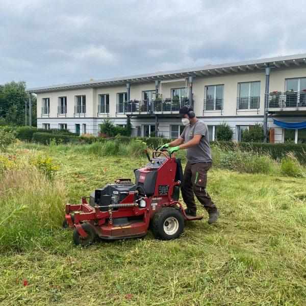 Tewes-Kampelmann Garten- und Landschaftsbau aus Herne - GaLaBau Gartenpflege Action (1)